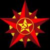 Projet d'intégration à l'Union militaire des nations socialistes